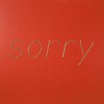 v-sorry-fin
